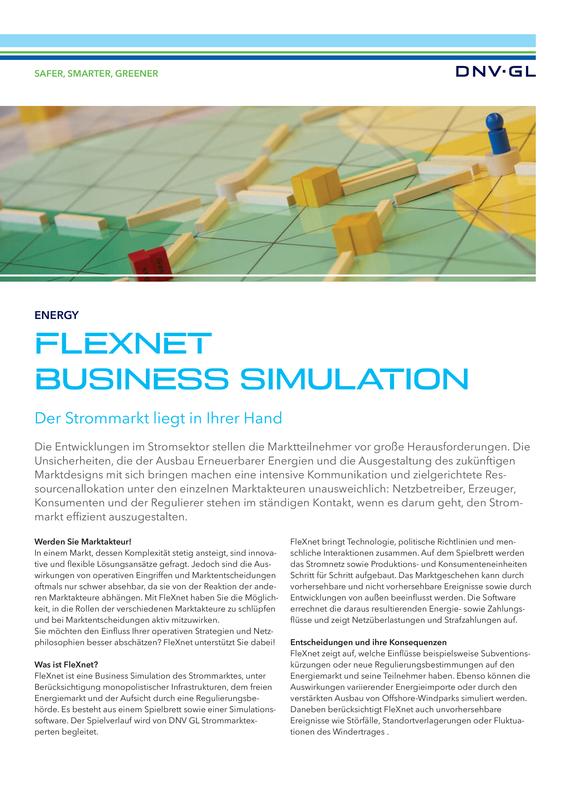 FleXnet business simulation
