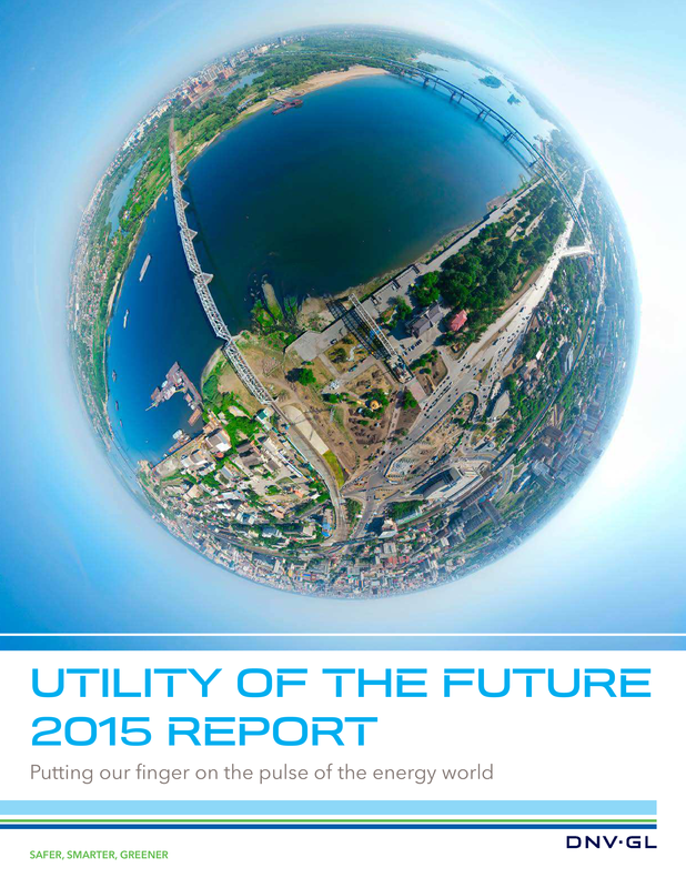 Utility of the Future Pulse Survey 2015 Report.pdf