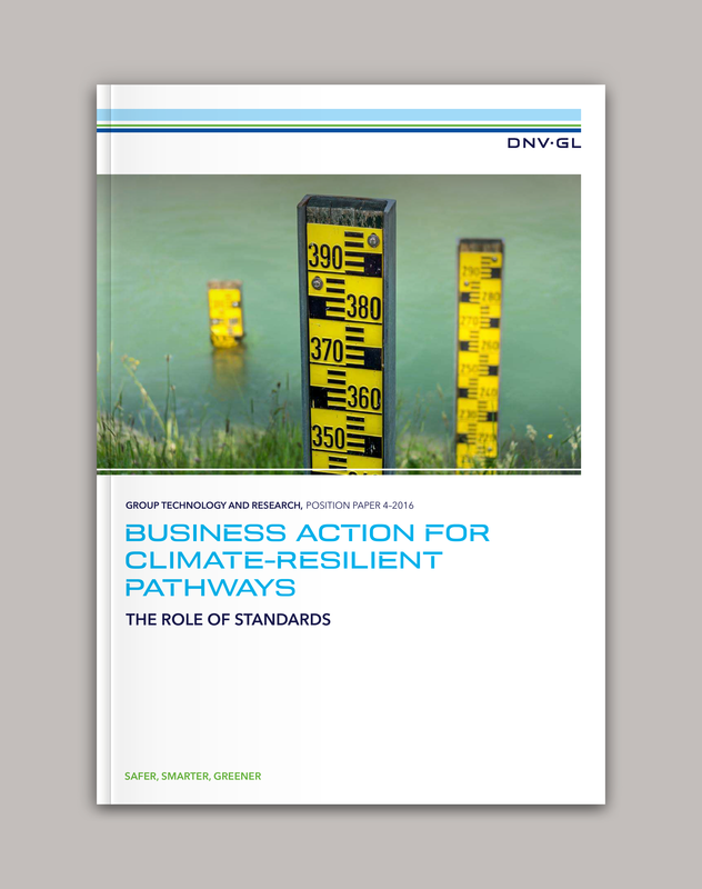 Position paper: Business action for climate-resilient pathways - The role of standards