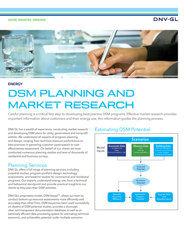 DSM Planning and Market Research