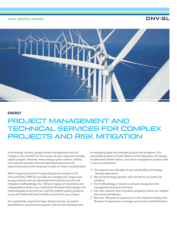 Project management and technical services for complex projects and risk mitigation