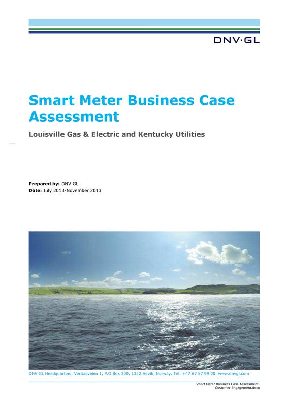 Smart meter business case assessment white paper