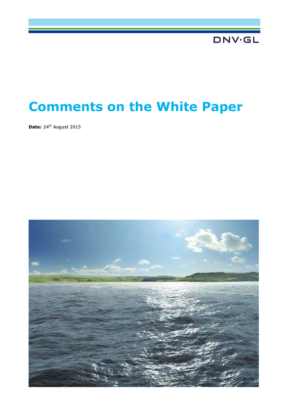 Comments on the white paper
