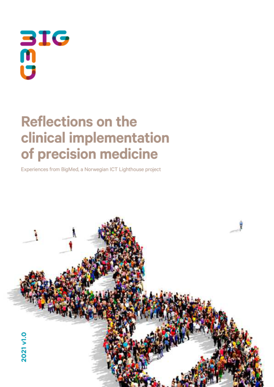 BigMed_Reflections on the clinical implementation of precision medicine