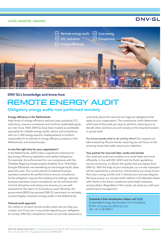 Remote energy audit