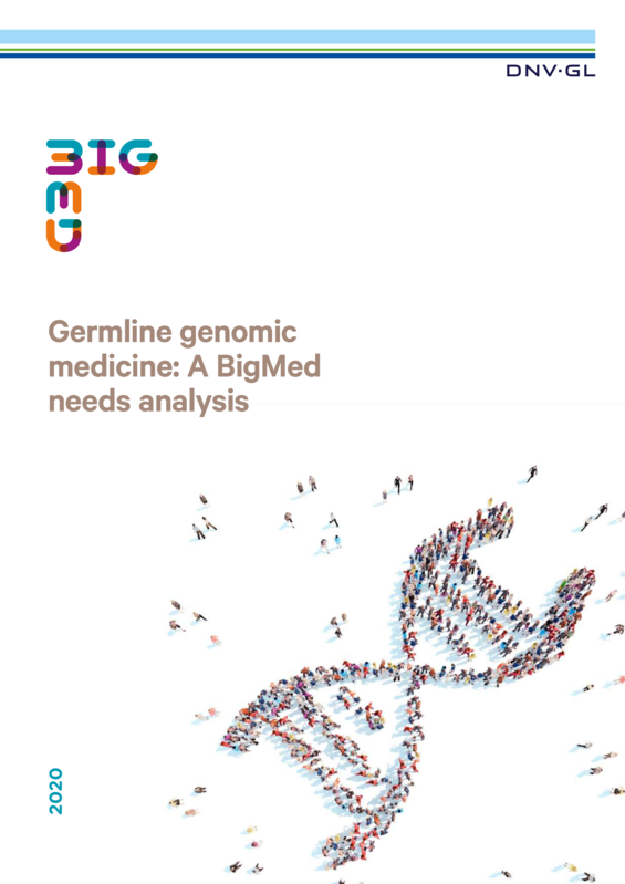 BigMed Germline genomic medicine: A BigMed needs analysis