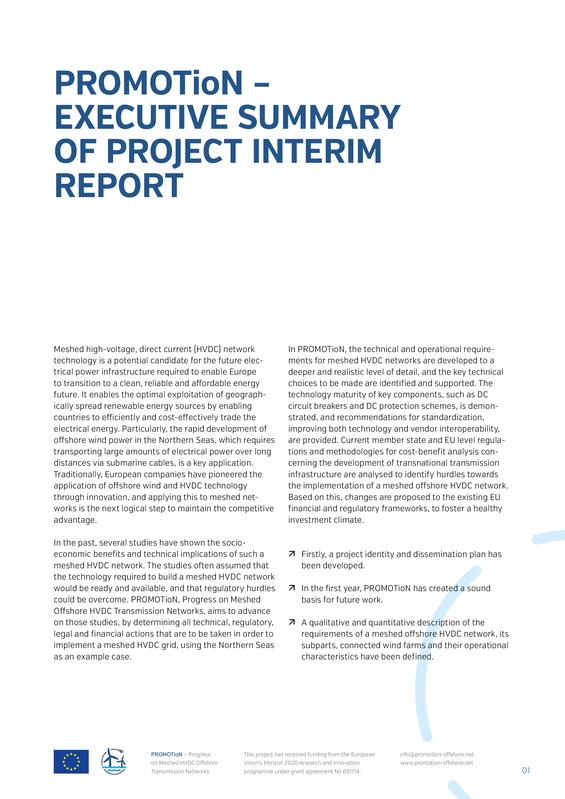 PROMOTioN executive summary of the interim report.pdf